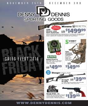 1-ddsg_blackfridaysale_cover
